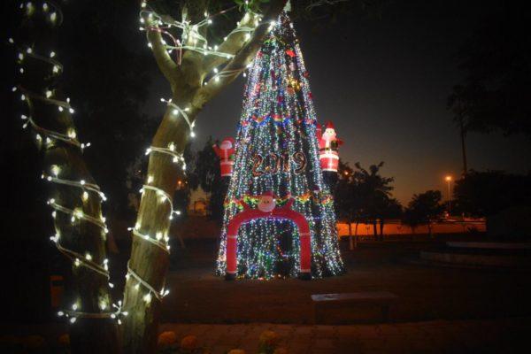 Photo of شوارع العاصمة بغداد تتزين بأشجار الميلاد ابتهاجا بمولد المسيح(ع)