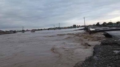 Photo of تعطيل الدوام الرسمي في عموم نينوى جراء الامطار والسيول الغزيرة
