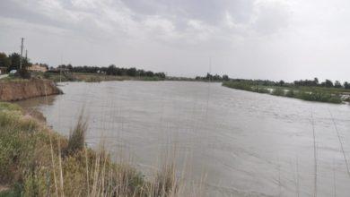 Photo of محافظ بغداد: إعادة توزيع الحوضيات المائية على منطقتي المعامل والدسيم لوجود مسارب مائية