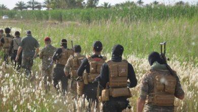 Photo of الحشد الشعبي والجيش يطلقان عملية عسكرية واسعة لتأمين الصحراء الكبرى