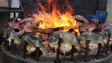 Photo of السمك المسكوف العراقي.. في رمضان
