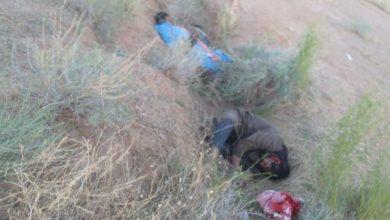 Photo of الحشد الشعبي يقتل ثلاثة عناصر من داعش في وادي حوران