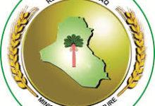 Photo of وزارة الزراعة  تسمح بتصدير  محاصيل الجت والبرسيم ومخلفات الذرة الصفراء  لوفرتها  محليا