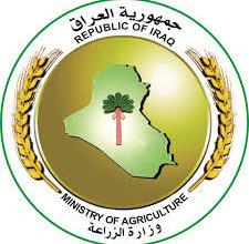 Photo of وزير الزراعة يوجه بأستيراد كافة الاعلاف التي يحتاجها قطاع الدواجن