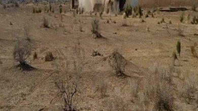 Photo of الاستخبارات العسكرية تداهم عدة مضافات وتدمرها في صلاح الدين