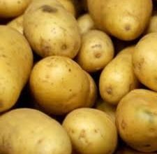 Photo of وزارة الزراعة تمنع أستيراد  محصول البطاطا  لوفرتها محليا
