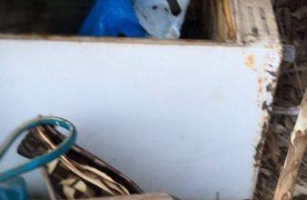 Photo of الحشد الشعبي يعثر على مضافة لداعش تحوي مواد لوجستية في خانقين