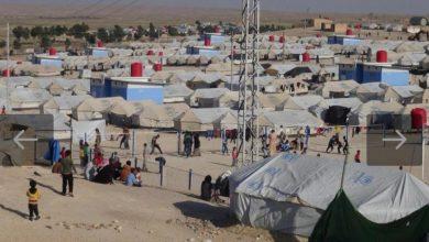 Photo of وصفت بالقنابل الموقوتة.. جدل في نينوى بسبب استقبال عائلات تنظيم الدولة