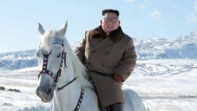 Photo of اخر ظهور منذ 3 اسابيع .. زعيم كوريا الشمالية يختفي مجددا