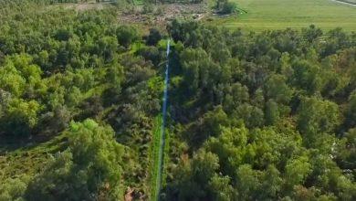 Photo of صور جوية تظهر جمال و سحر غابات الشحيمية الواقعة بالقرب من قضاء الصويرة في محافظة واسط الحبيبة
