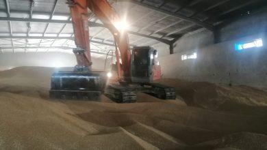 Photo of التجارة تعلن انطلاق الموسم التسويقي لمحصول الحنطة المحلية  في كركوك لعام  ٢٠٢٠