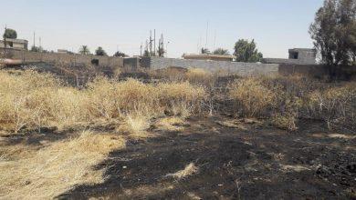 Photo of التجارة.. الحريق الذي حصل في صومعه الشرقاط هو احتراق حشائش وادغال