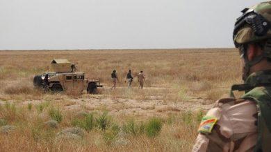 Photo of قوة مشتركة تعتقل إرهابيين اثنين وتعثر على وكر في صلاح الدين