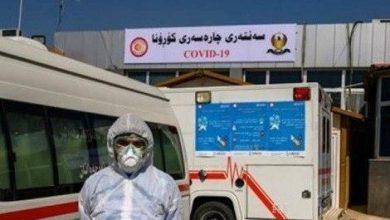 Photo of صحة كردستان تعلن عدم تسجيل أي اصابات لليوم السابع على التوالي