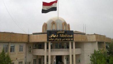 Photo of مصر تدين الهجوم الإرهابي الذي استهدف إحدى قرى محافظة ديالي العراقية