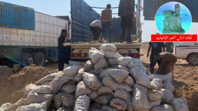 Photo of هيأة المنافذ الحدودية: اتلاف ارسالية مادة البطاطا حفاظا ودعما للمنتج المحلي في منفذ الشيب الحدودي