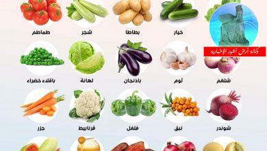 Photo of وزارة الزراعة تمنع استيراد 24 منتجاً نباتياً وحيوانياً لوفرتها محلياً
