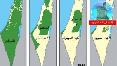 Photo of في ذكرى قرار تقسيم فلسطين كما يكتب أمين محمود