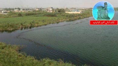 Photo of بيئة القرنة: الحفر العراقية أزالت الملوثات النفطية في نهر العز والأراضي القريبة