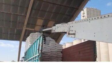 Photo of التجارة  : مخازن الرز في سايلو الموصل تستقبل  تسع شاحنات محملة بالرز المحلي